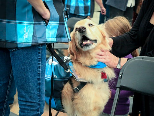 635864217526720564-Denver-International-Airport-added-a-dog-therapy-program-named-C.A.T.S..jpg