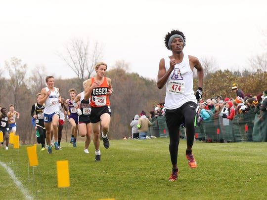 Apollo High School runner Ahmed Cariff competes in the State class 2A cross country meet Saturday in Northfield.