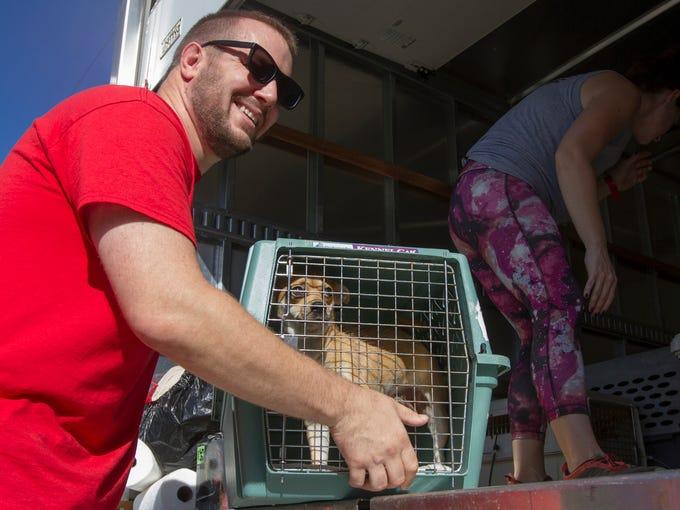 Wayne Leinen, executive director of Animal Refuge Center