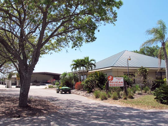 Pelican Nursery closed in spring 2017 to make way for future development on its more than 55 acres on the southeast corner of Immokalee Road and Collier Boulevard.