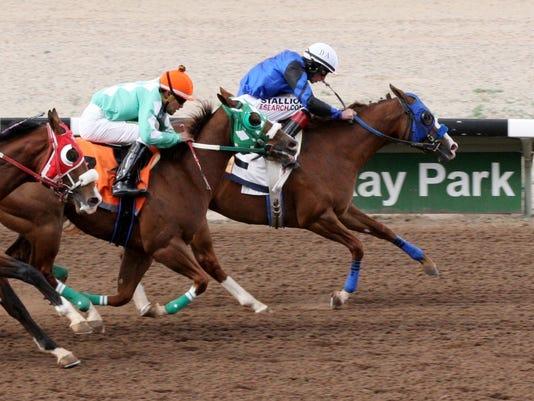 FMN Horses 0430