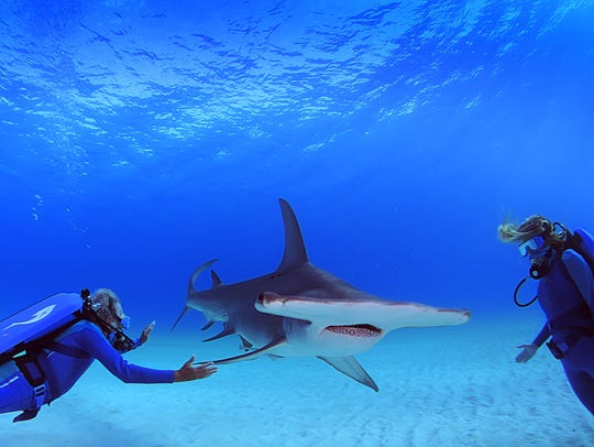 Ocean explorers Jean-Michel Cousteau and Holly Lohuis
