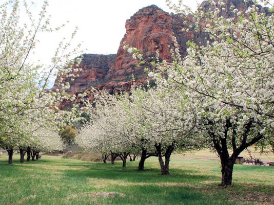 Slide Rock State Park orchards