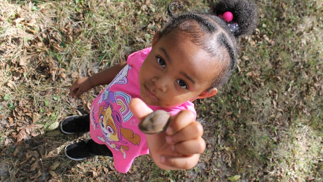 Two-year-old Jurnee Jones of Dinwiddie holds up a pecan proudly during Richard Bland College's 4th annual Pecan Festival in the Grove held on Oct. 12, 2019.