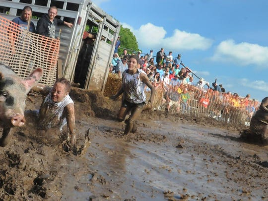 The Happy Hour team attempts to chase down an elusive swine during the mud pig wrestling at last year's Thresheree.