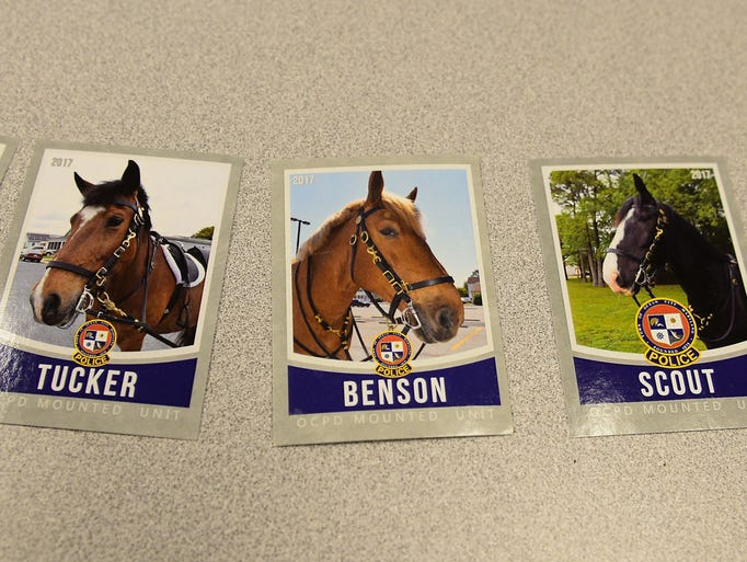 The Ocean City Mounted Police hand out Trading Cards