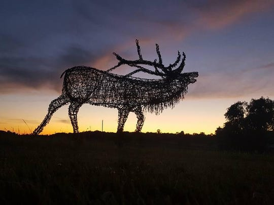 A barbed wire elk sculpture seems to call out to the