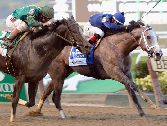Havana favored in Juvenile