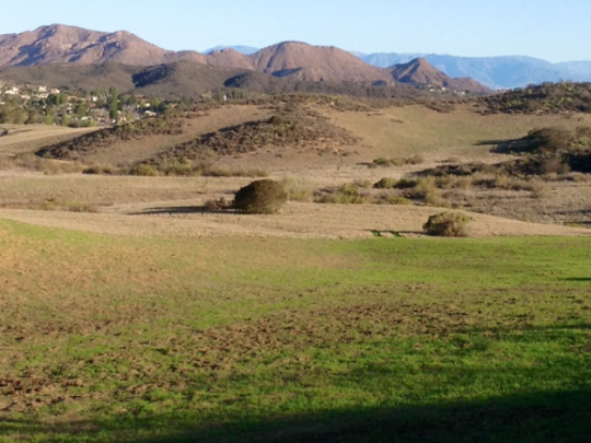 Conejo Peak – at 2,854 feet – is one of the area's