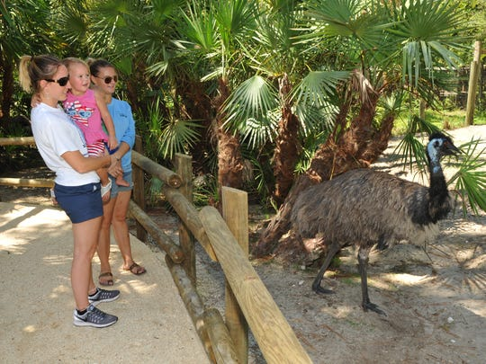 Visitors to the Brevard Zoo check out the recently
