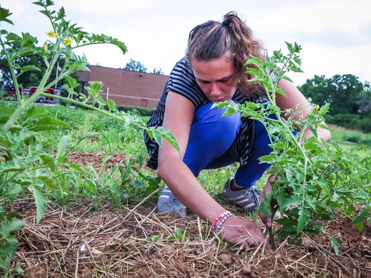 Patrisha Darling, who is homeless, earns money by working the Journey Home Garden in Murfreesboro.