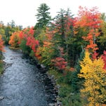 Michigan's best fall-color drives and when to go