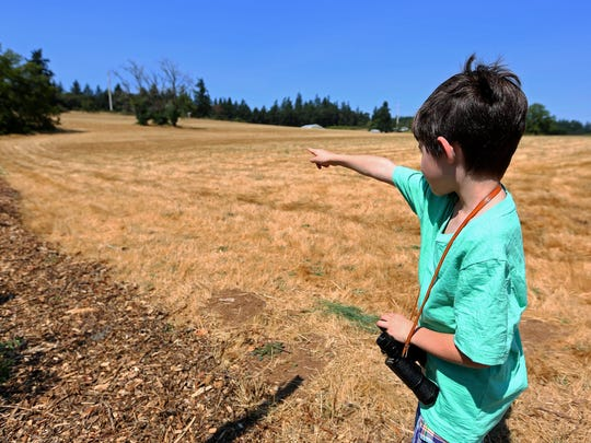 Nolan Venti point to where he saw a cougar in the field next to the Ellen Lane Community Garden on Monday.