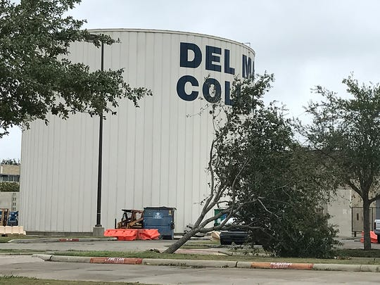 A tree is uprooted in the parking lot of Del Mar College
