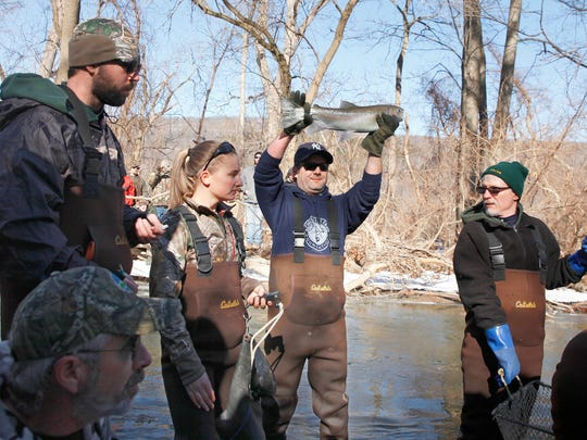DEC official Dan Mulhill holds up a rainbow trout for onlookers at the annual rainbow trout sampling in Naples Creek south of Canandaigua Lake in Naples.