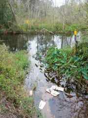 The headwaters for Carpenter's Creek off Olive Road are littered with trash in Pensacola on Thursday, December 7, 2017.  The Emerald Coastkeeper and Escambia County will host the first cleanup event these waters.