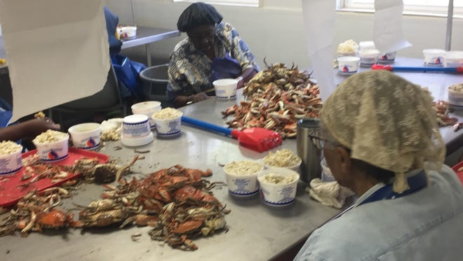 Thelma Coston and Marian Sample works at Nandua Seafood LLC in Hacks Neck, Virginia on Wednesday, July 4, 2018.