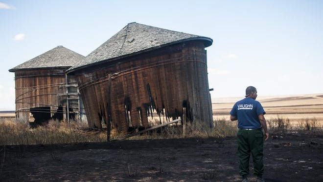 Vaughn Fire Chief Jason McAllister surveys damage and smoldering structures on Ryan McWilliams' Vinyard Road property Wednesday.