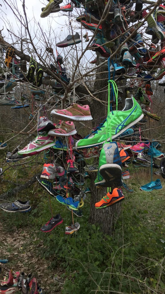 Cross country running shoes.