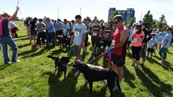 Dogs and their owners participate in the WillaMutt Strut 5K Fun Run and Walk on Sunday, June 14, 2015, at Riverfront Park in Salem.