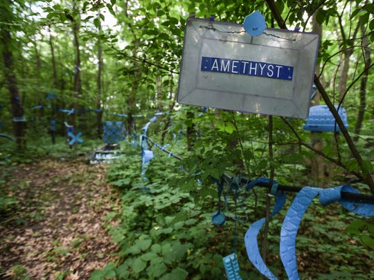 """Part of The Blue Loop installation in the wooded lot on Bath artist Robert Park's property, Thursday, July 5, 2018. Park has been told by the township to clean up the """"junk"""" in his yard, which he views as an art installation. Park has a bachelor's in fine arts from Michigan State University. He also earned his teaching certificate there. He had a solo show at MSU in the fall of 2017."""
