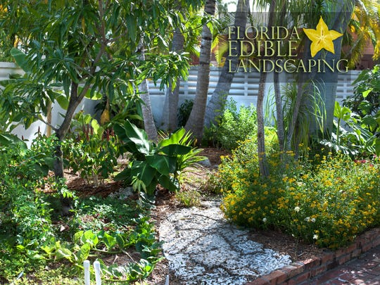 Plants of various heights combine in an edible landscape to create a sustainable ecosystem that produces food as a return for the time and money invested in keeping up the yard.