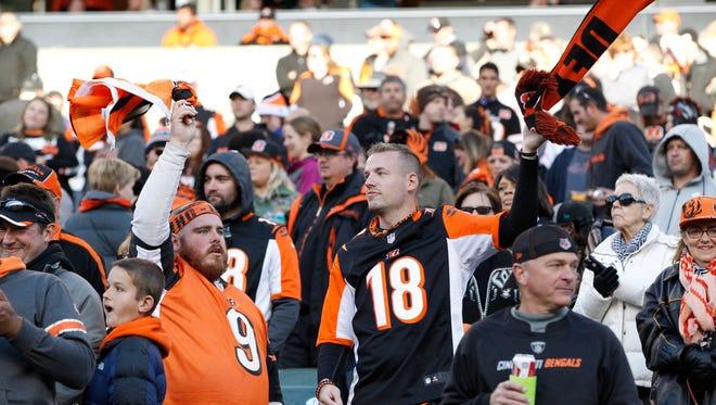 Cincinnati Bengals fans cheer the team during the fourth quarter of their game against the Jacksonville Jaguars played at Paul Brown Stadium in Cincinnati, Ohio November  2, 2014.