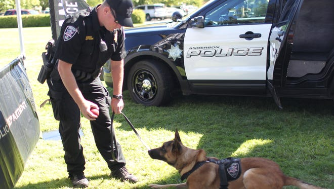 Anderson police K-9 Chance stares intently at the Kong toy in his handler, Officer Tyler Finch's hand. Chance helped in the recovery of a stolen motorcycle and stolen car Sunday in Anderson.