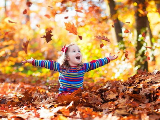Sweet little girl in autumn park