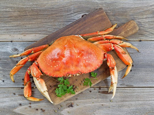 Sierra Gold Seafood in Sparks is selling live and cooked Dungeness crab, subject to availability.
