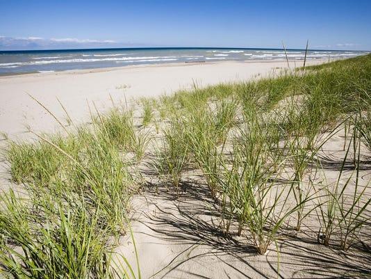 Grassy Sand Dunes and Lake Michigan