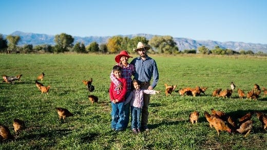 The Casillas family owns and operates EZ Does it Farm whcih has free-range chickens that produce eggs.
