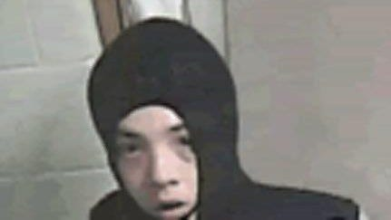 Police seek this suspect in a break-in at the Burlington County Animal Shelter