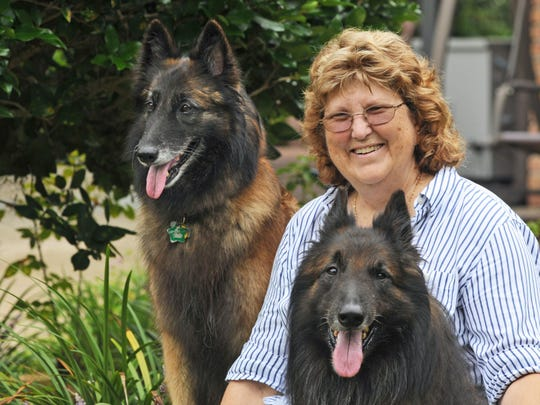 Melbourne's Valerie Harville with her Belgian Tervuren dogs Walker and Reagyn.