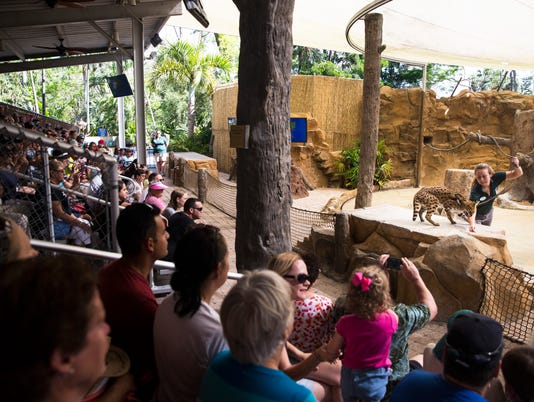 LEDE NDN 1014 Zoo Reopens 001