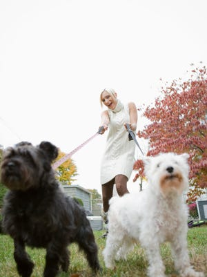 Portrait of young blonde woman walking dogs in park
