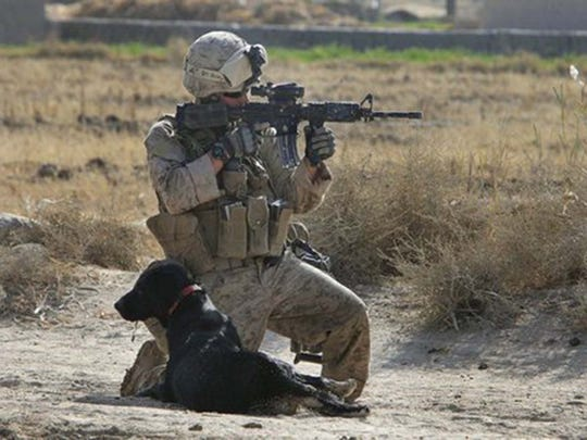 An undated photo of Jeff DeYoung and his dog Cena in Afghanistan.