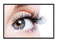 Save $50 On Eyelash Extensions