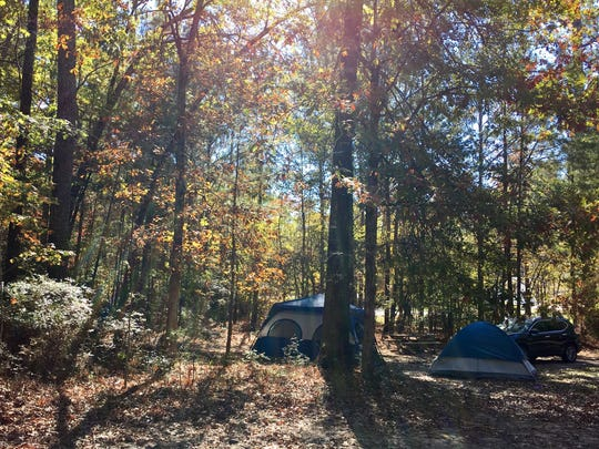 Jimmie Davis State Park in Chatham offers primitive camping spots.