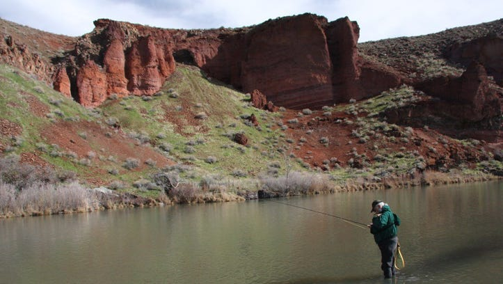Angler on the Owyhee River.
