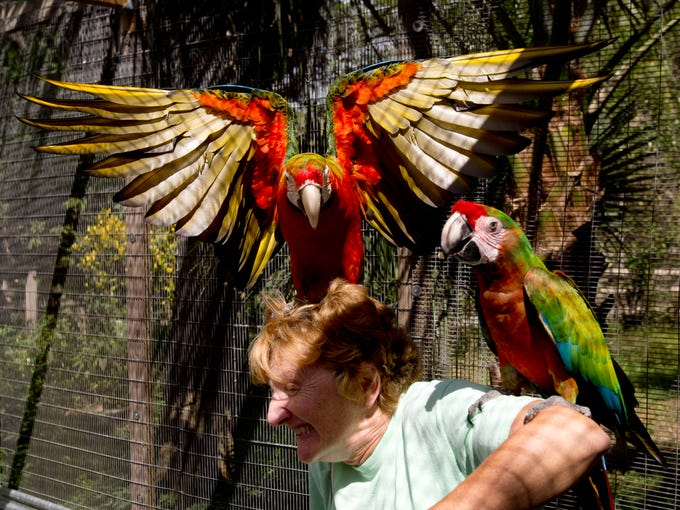 Nancy Hill, a resident of Naples gets acquainted with