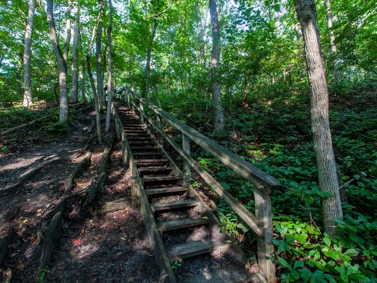Cheesequake State Park is over 1600 acres of mixed forest, marsh and has a system of well marked hiking trails.