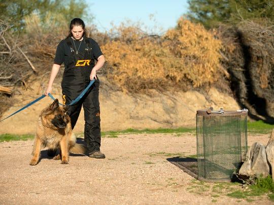 Dog trainer Megan Fiedler handles the dog Bella as