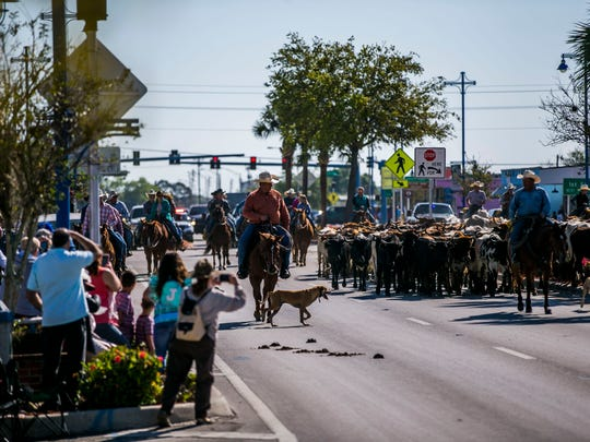 Cattle men and women lead a herd of cattle through downtown Immokalee during the Immokalee Cattle Drive and Jamboree on Saturday, March 10, 2018.