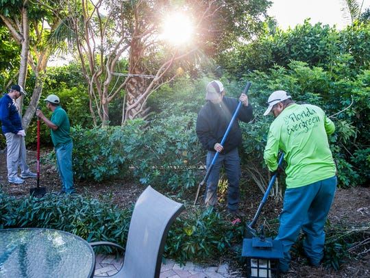 Landscapers from Florida Evergreen Landscape & Lawn