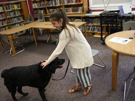 Fifth grader Hailey Smallacomb, 10, works with Riley, a therapy dog at Palmer Elementary School in Windsor.