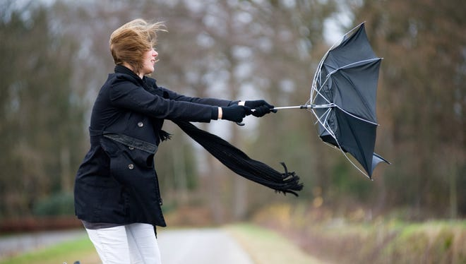 Strong winds could bring down tree limbs and power lines and cause problems on area roads on Friday, forecasters said.