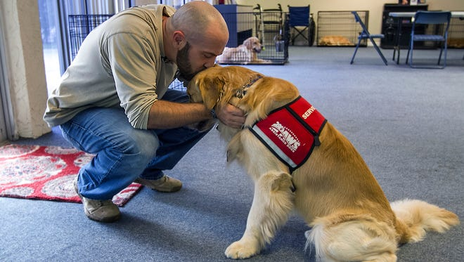 Reid Erickson, of Cape Coral, a 9 year Army veteran and a member of the 178th Airborne Division, interacts with his recently acquired Golden Retriever, Melton Thursday afternoon (9/8/16). Erickson was training with the PAWS Assistance Dogs in Naples. The dog's assistance has aided Erickson, who struggles daily to cope with severe PTSD, mobility issues, and random episodes of excruciating pain and discomfort.