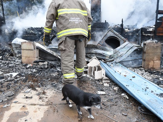 One of the dogs at Perry's Orphans Sanctuary and an Oakland-Promise Land firefighter are pictured among the charred remains of the home owned by Perry Boore following last week's fire.