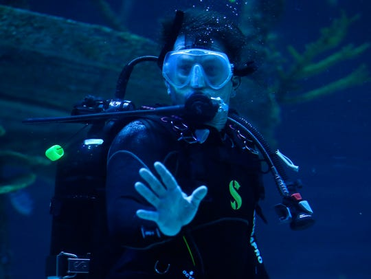 Actor Mark Wahlberg scuba dives in the shipwreck tank at Wonders of Wildlife National Museum and Aquarium on Wednesday, Sept. 20, 2017. This month, he encouraged his fans to vote for WOW in USA TODAY's best new attraction online poll.